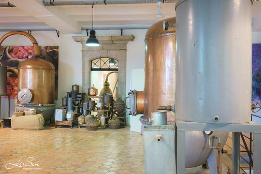 格拉斯花宫娜香水厂旅游景点图片