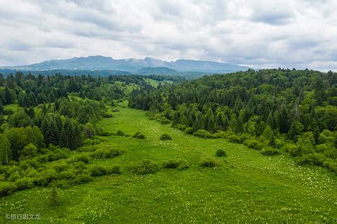 高山花园旅游景点攻略图