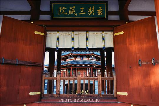 药师寺旅游景点图片