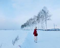 北海道绕过旅游景点打卡,只为心中那粉雪!
