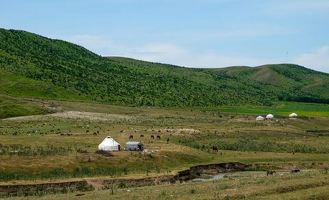 草原石人风景区旅游景点攻略图