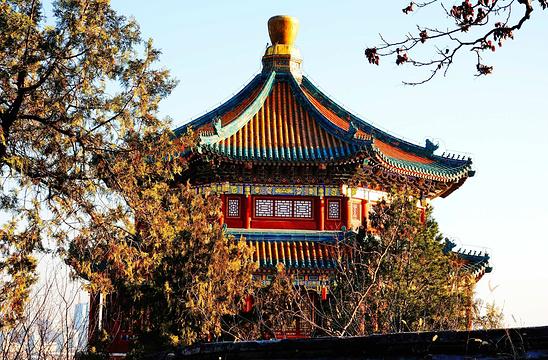 佛香阁旅游景点图片