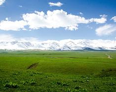 大梦新疆,那拉提草原美景正当时