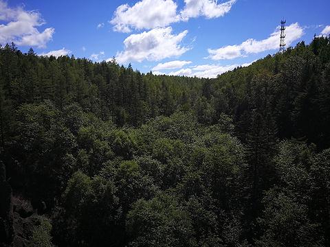 长白山峡谷浮石林旅游景点图片