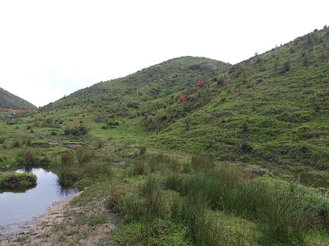 新兴天露山旅游度假区旅游景点图片