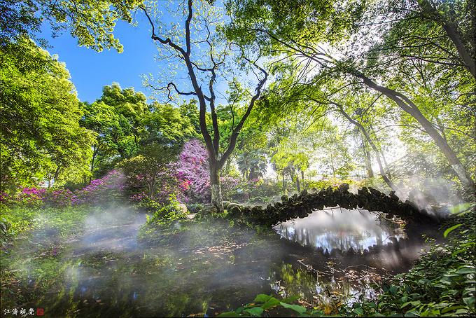 武汉植物园百花争艳,美得让人陶醉!
