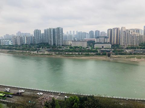 李子坝旅游景点攻略图