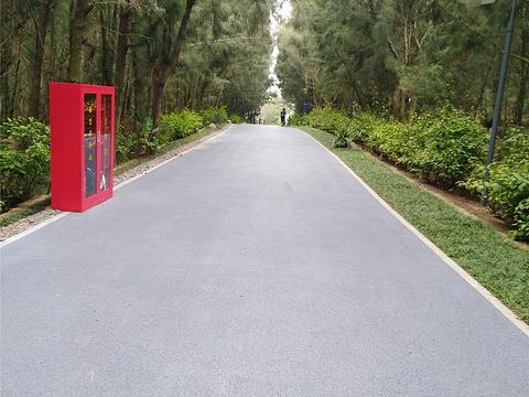 厦门湾·白塘湾火山公园旅游景点图片