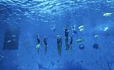 火山鲸鲨馆