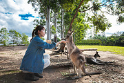 昆士兰旅游景点攻略图片