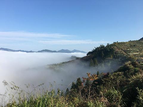 金竹岭村旅游景点图片