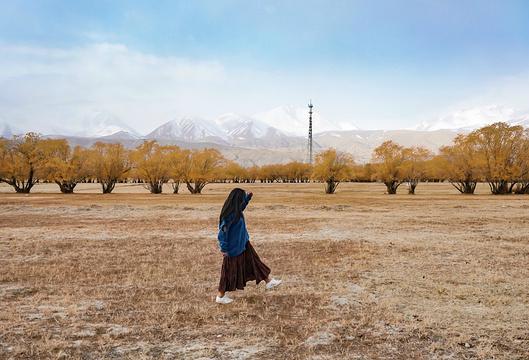 塔合曼乡旅游景点图片