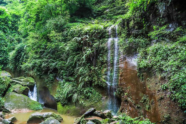 """""""这里是中国侏罗纪、白垩纪丹霞地貌发育最好、出露最齐、特色最典型的景区_赤水丹霞旅游区·佛光岩""""的评论图片"""