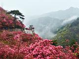 石泉旅游景点攻略图片