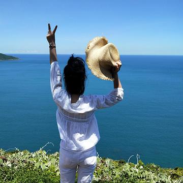 山茶半岛旅游景点攻略图
