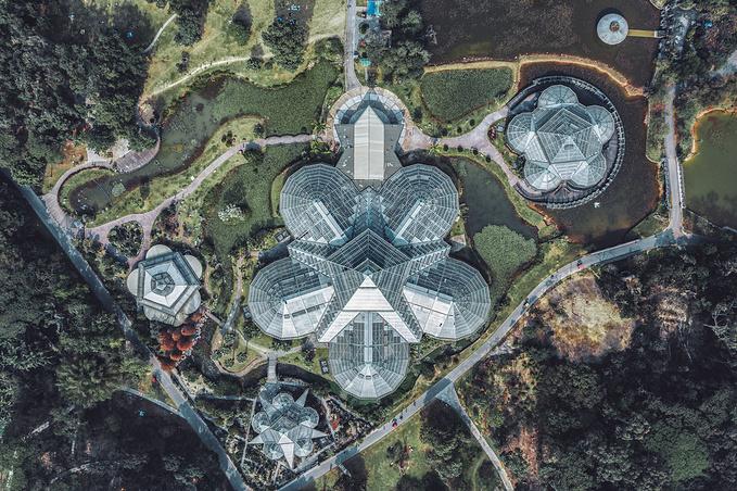 中国科学院华南植物园图片