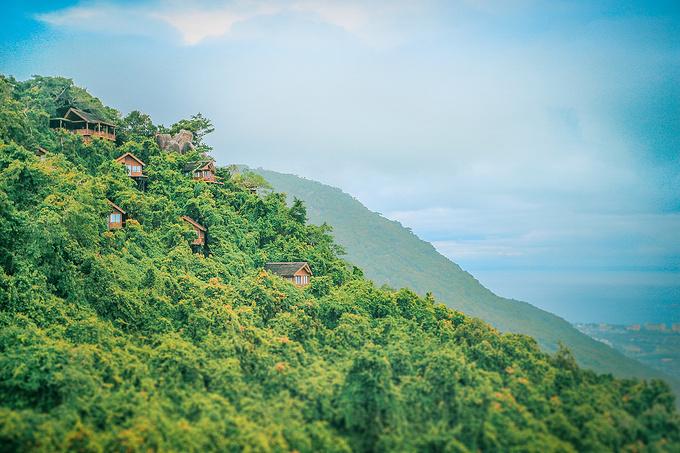 亚龙湾热带天堂森林公园,为非诚勿扰而来图片