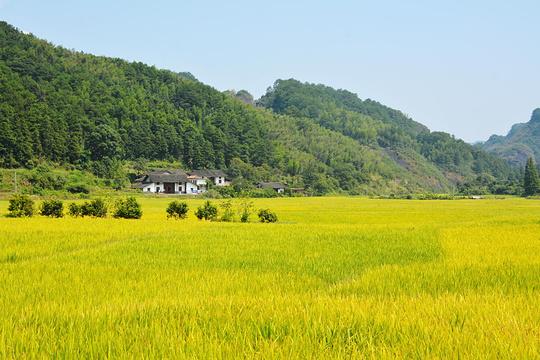 八角寨景区旅游景点图片