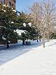 北海道大学综合博物馆