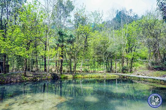 绕南陶瓷主题园区旅游景点图片
