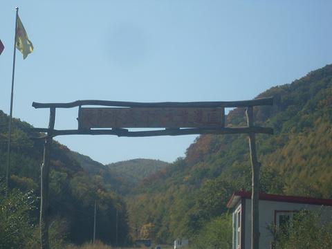 国家吊水壶森林公园旅游景点图片