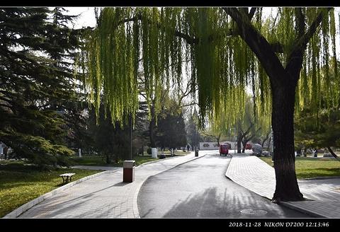 龙潭公园旅游景点攻略图