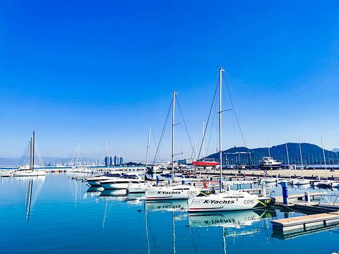 半山半岛吉庆广场旅游景点图片
