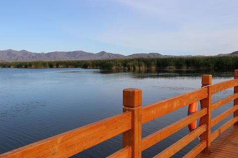 可可苏里湖