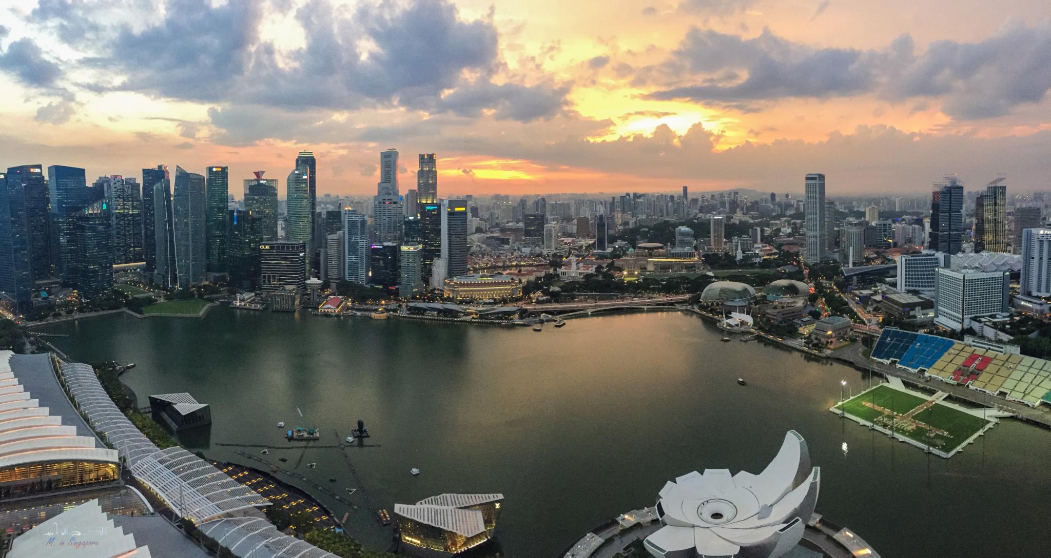 五年三次新加坡,心想狮城的每一个美丽角落