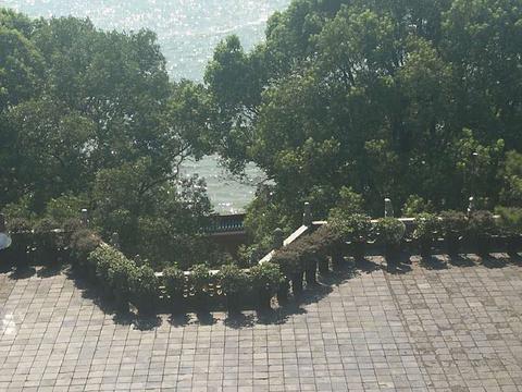 洞庭湖旅游景点图片