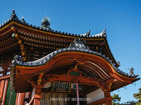 兴福寺旅游景点图片