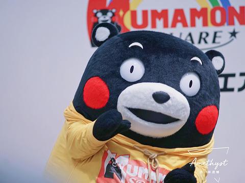熊本熊部长办公室旅游景点图片