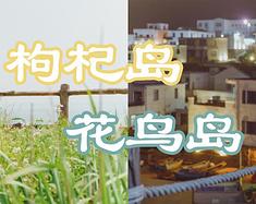 5月,送给自己的生日礼物,一场东海小岛旅行(附枸杞岛、花鸟岛拍照攻略)