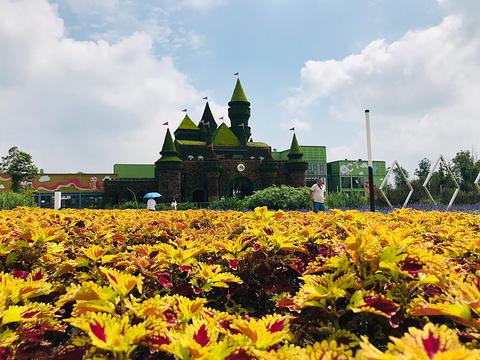 锦绣安仁花卉公园旅游景点图片