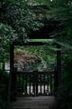 西溪湿地公园(东区)