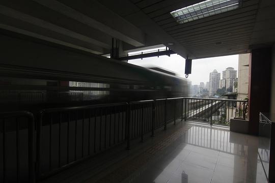 李子坝旅游景点图片