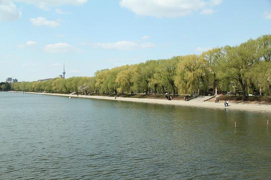 净月潭湿地公园旅游景点图片