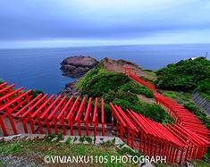发现不一样的日本 | 这次解锁山口和广岛!
