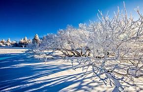 走进银装素裹的冰雪童话世界,长白山的冬天尽显魅力~