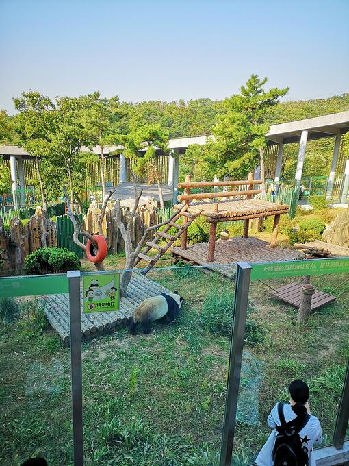 大连森林动物园图片