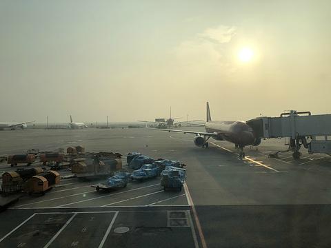 浦东国际机场旅游景点图片