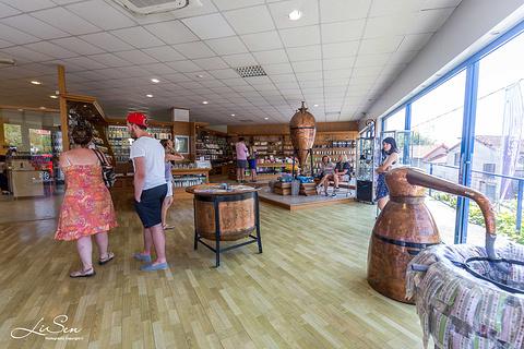 加里玛香水厂旅游景点攻略图