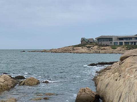 环海路风景线的图片