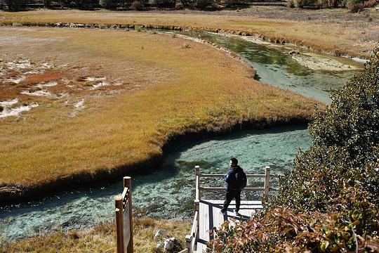 洛绒牛场旅游景点图片