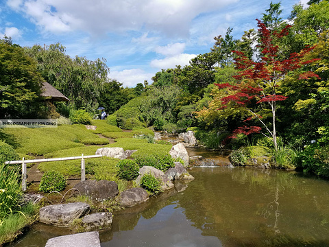 退藏院庭园