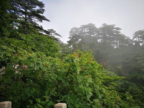 始信峰旅游景点图片