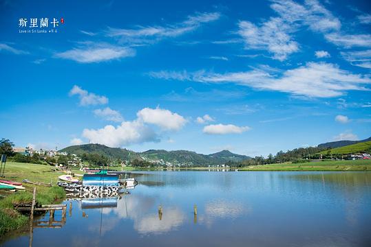 格雷戈里湖旅游景点图片