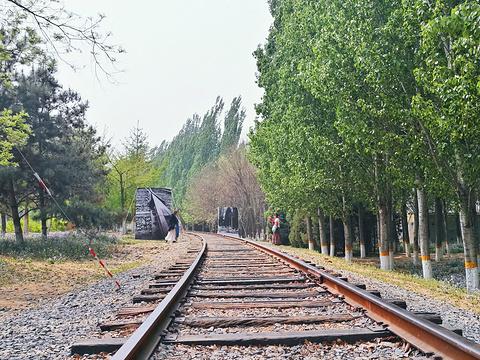 将府公园旅游景点图片