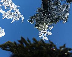 南国雪色——西岭雪山
