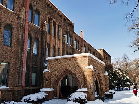北海道大学综合博物馆旅游景点图片